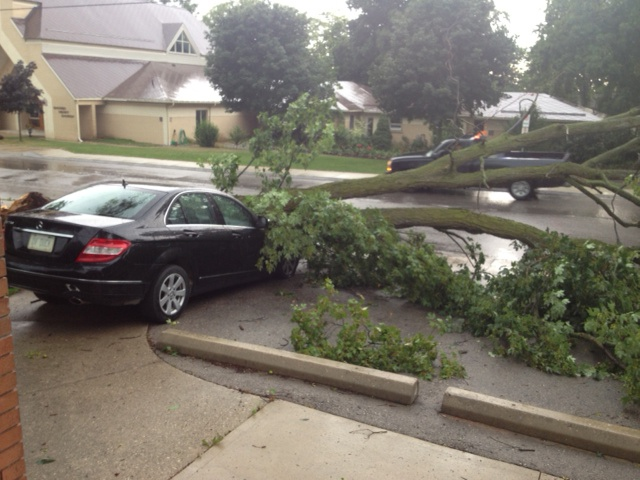 A car is damaged by a fallen tree in Wingham, Ont., Friday, July 19, 2013. (Scott Miller / CTV London)