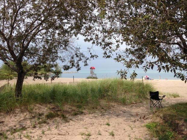 The rotary cove beach essay