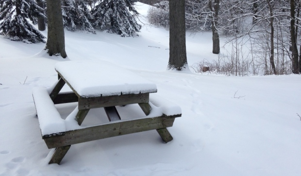 A snow-covered picnic table in London, Ont. on Wednesday, Feb. 10, 2016. (Chuck Dickson / CTV London)