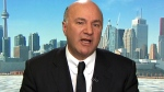 Kevin O'Leary, the chair of O'Leary Financial Group and a potential leadership contender for the federal Conservative Party, speaks to Power Play on Wednesday, Feb. 10, 2016.