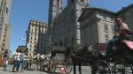 Montreal caleche