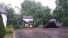 St Thomas storm aftermath/13754256_1632151873779838_2609626070816545912_n.jpg