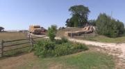 Hay could be next big Ontario export