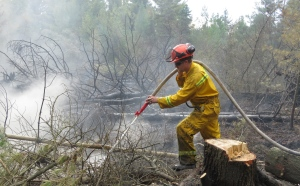 Crews have been working on extinguishing a peat fire in Perth County since the weekend. (Photo Credit: Upper Thames River Conservation Authority)
